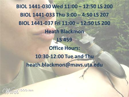 BIOL 1441-030 Wed 11:00 – 12:50 LS 200 BIOL 1441-033 Thu 3:00 – 4:50 LS 207 BIOL 1441-037 Fri 11:00 – 12:50 LS 200 Heath Blackmon LS 459 Office Hours: