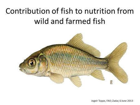 Contribution of fish to nutrition from wild and farmed fish