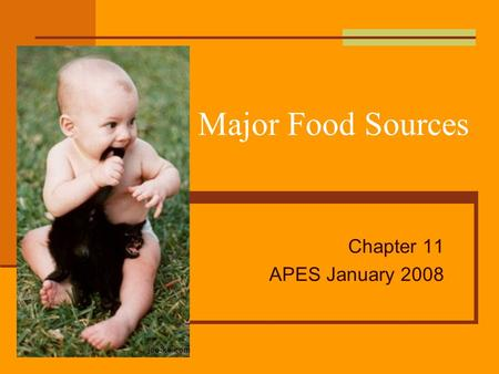 Major Food Sources Chapter 11 APES January 2008. Food What do we eat? What do other cultures eat? Are we using our food resources effectively? What changes.