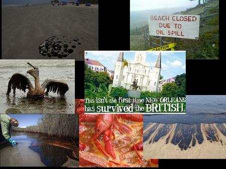 Effects of Oil Spill Beach and Oceans related activities Wildlife related activities Dining and seafood.