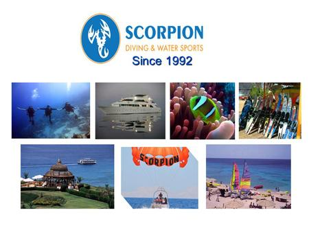 Since 1992. Our Vision At Scorpion we are relentless in our focus of 100% guest satisfaction by applying strict safety measures, offering value for money,