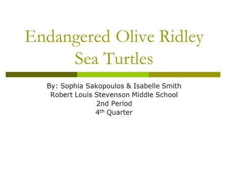 Endangered Olive Ridley Sea Turtles By: Sophia Sakopoulos & Isabelle Smith Robert Louis Stevenson Middle School 2nd Period 4 th Quarter.