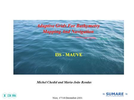 Nice, 17/18 December 2001 Adaptive Grids For Bathymetry Mapping And Navigation Michel Chedid and Maria-João Rendas I3S - MAUVE.