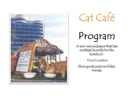Cat Café Program A win-win endeavor that has multiple benefits for the hotels of : Your Location their guests and our feline friends.