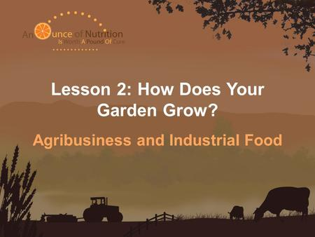 Lesson 2: How Does Your Garden Grow? Agribusiness and Industrial Food.