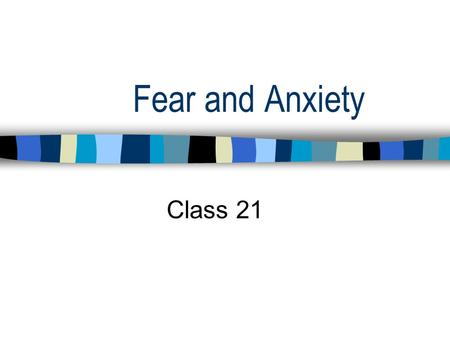 Fear and Anxiety Class 21. Final Exam Date and Time Date:Tuesday, May 14 Time:11:45-2:45.