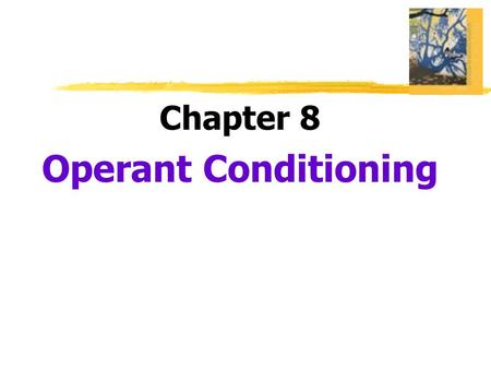 Chapter 8 Operant Conditioning.  Operant Conditioning  type of learning in which behavior is strengthened if followed by reinforcement or diminished.
