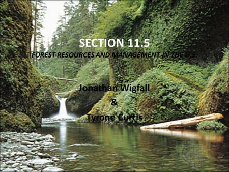 SECTION 11.5 FOREST RESOURCES AND MANAGEMENT IN THE U.S. Jonathan Wigfall & Tyrone Curtis.