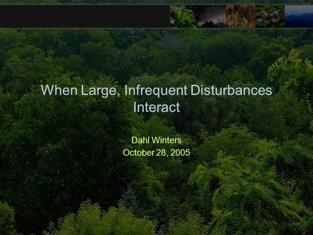 When Large, Infrequent Disturbances Interact Dahl Winters October 28, 2005.