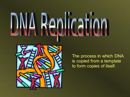 The process in which DNA is copied from a template to form copies of itself.