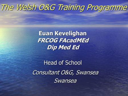 Euan Kevelighan FRCOG FAcadMEd Dip Med Ed Head of School Consultant O&G, Swansea Swansea The Welsh O&G Training Programme.