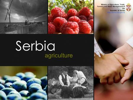 Serbia agriculture Ministry of Agriculture, Trade, Forestry and Water Management of the Republic of Serbia