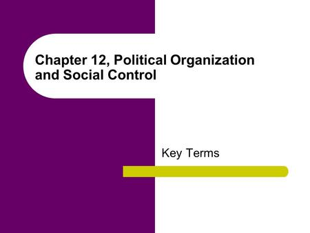Chapter 12, Political Organization and Social Control Key Terms.