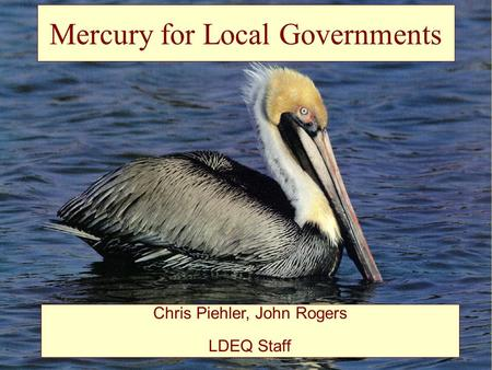 Mercury for Local Governments Chris Piehler, John Rogers LDEQ Staff.