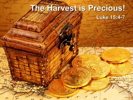 The Harvest is Precious! Luke 15:4-7. The Harvest is Precious! Message Thesis: God is mindful of us! Mindful: aware of, cognizant, concerned Message Objective:
