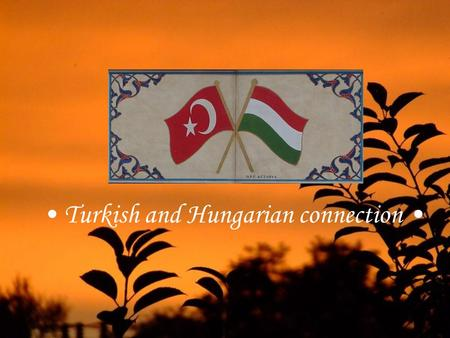 Turkish and Hungarian connection Turkish loan words in Hungarian language ☺Hugarian language has hundreds of Turkish loan words, which show close connection.