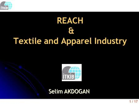 1 / 17 REACH & Textile and Apparel Industry Selim AKDOGAN.