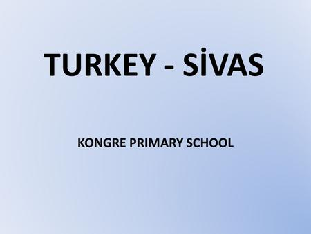 TURKEY - SİVAS KONGRE PRIMARY SCHOOL. ALL ABOUT TURKEY.
