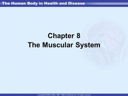 Chapter 8 The Muscular System. Muscle tissue is made of a collection of similar muscle cells (or fibers). There are three types of muscle found in the.