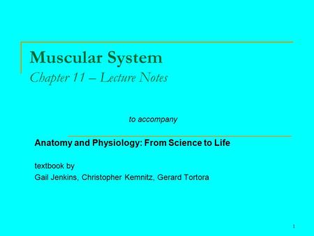 1 Muscular System Chapter 11 – Lecture Notes to accompany Anatomy and Physiology: From Science to Life textbook by Gail Jenkins, Christopher Kemnitz, Gerard.