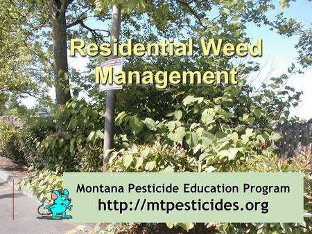 Montana Pesticide Education Program  Residential Weed Management.