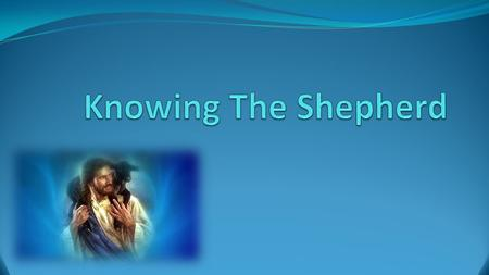 Knowing The Shepherd What people are saying:  A prophet  A teacher  Not the Son of God  Not real.
