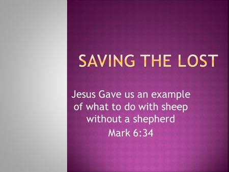 Jesus Gave us an example of what to do with sheep without a shepherd Mark 6:34.