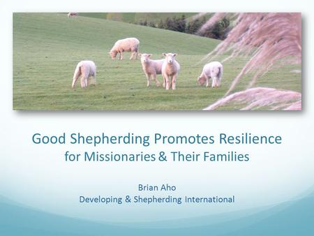 Good Shepherding Promotes Resilience for Missionaries & Their Families Brian Aho Developing & Shepherding International.