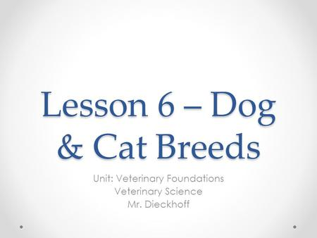 Lesson 6 – Dog & Cat Breeds Unit: Veterinary Foundations Veterinary Science Mr. Dieckhoff.