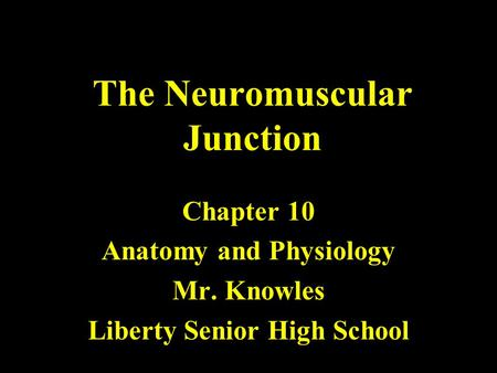 The Neuromuscular Junction Chapter 10 Anatomy and Physiology Mr. Knowles Liberty Senior High School.