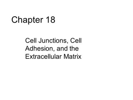 Chapter 18 Cell Junctions, Cell Adhesion, and the Extracellular Matrix.