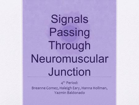 Signals Passing Through Neuromuscular Junction 4 th Period: Breanne Gomez, Haleigh Eary, Hanna Hollman, Yazmin Baldonado.