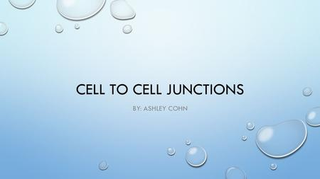 CELL TO CELL JUNCTIONS BY: ASHLEY COHN. SURFACE MARKERS STRUCTURE VARIABLE, INTEGRAL OR GLYCOLIPIDS IN PLASMA MEMBRANE. FUNCTION IDENTIFY THE CELL EXAMPLE.