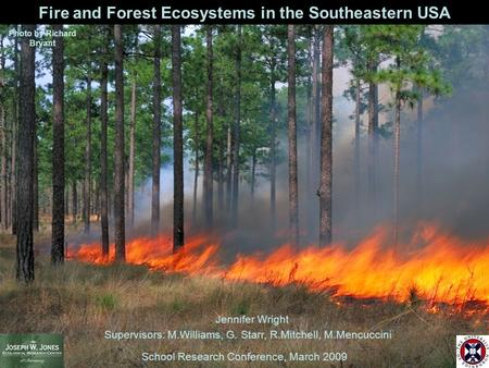 School Research Conference, March 2009 Jennifer Wright Supervisors: M.Williams, G. Starr, R.Mitchell, M.Mencuccini Fire and Forest Ecosystems in the Southeastern.