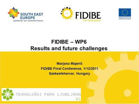 FIDIBE – WP6 Results and future challenges Marjana Majerič FIDIBE Final Conference, 1/12/2011 Szekesfehervar, Hungary.