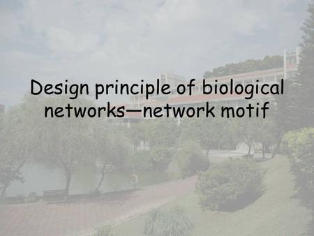 Design principle of biological networks—network motif.