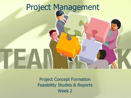 Project Concept Formation Feasibility Studies & Reports Week 2