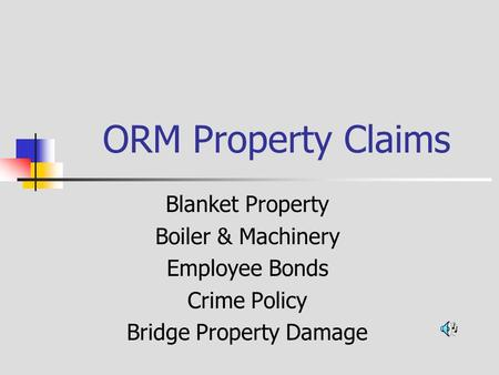 ORM Property Claims Blanket Property Boiler & Machinery Employee Bonds Crime Policy Bridge Property Damage.