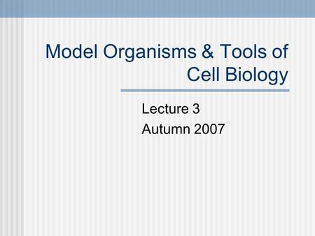 Model Organisms & Tools of Cell Biology Lecture 3 Autumn 2007.