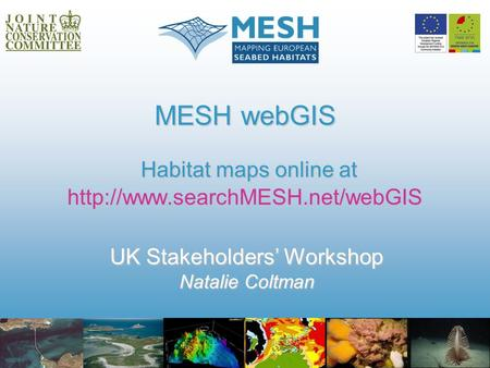 MESH webGIS Habitat maps online at