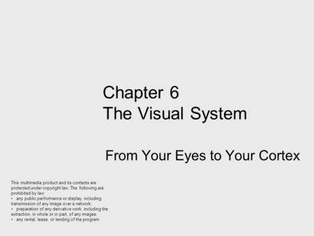 Chapter 6 The Visual System From Your Eyes to Your Cortex This multimedia product and its contents are protected under copyright law. The following are.