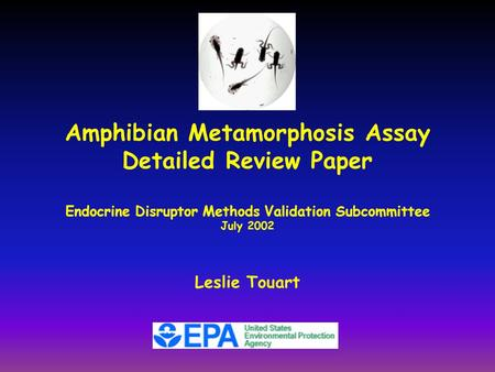 Amphibian Metamorphosis Assay Detailed Review Paper