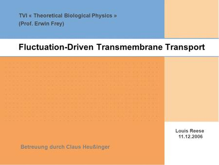 TVI « Theoretical Biological Physics » (Prof. Erwin Frey) Louis Reese 11.12.2006 Betreuung durch Claus Heußinger Fluctuation-Driven Transmembrane Transport.