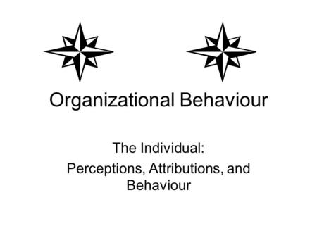 Organizational Behaviour The Individual: Perceptions, Attributions, and Behaviour.