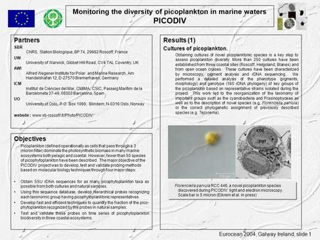 Eurocean 2004, Galway Ireland, slide 1 Monitoring the diversity of picoplankton in marine waters PICODIV Partners SBR CNRS, Station Biologique, BP 74,
