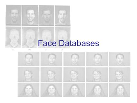 Face Databases. Databases for Face Recognition The appearance of a face is affected by many factors because of its non-rigidity and complex 3D structure: