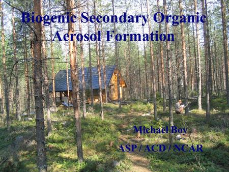 Biogenic Secondary Organic Aerosol Formation Michael Boy ASP / ACD / NCAR.
