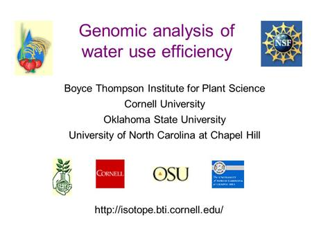 Genomic analysis of water use efficiency Boyce Thompson Institute for Plant Science Cornell University Oklahoma State University University of North Carolina.