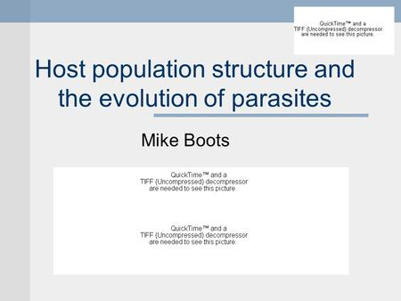 Host population structure and the evolution of parasites Mike Boots.