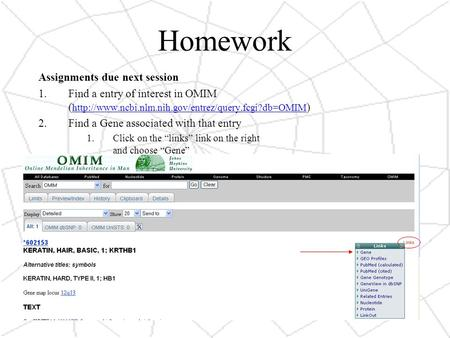 Homework Assignments due next session 1.Find a entry of interest in OMIM (  )